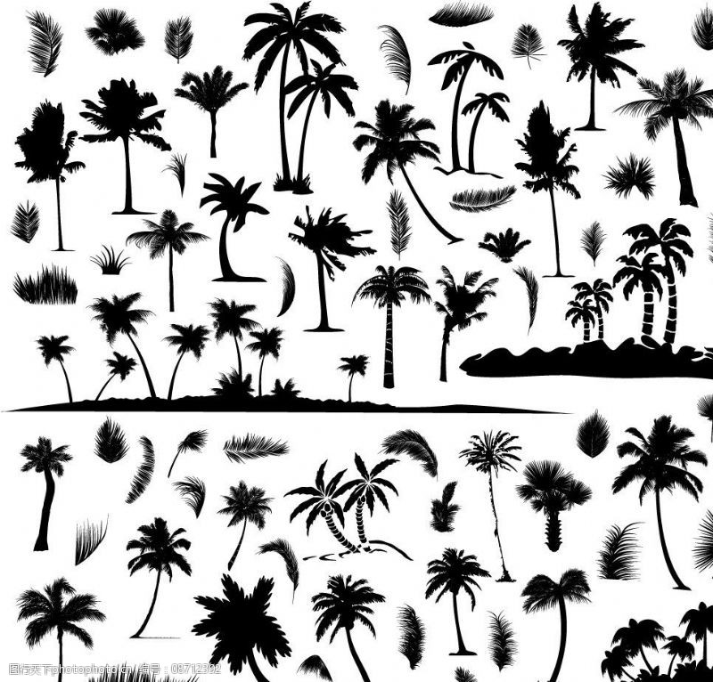 剪影椰子树沙滩图片素材想学广告设计应该先学什么图片