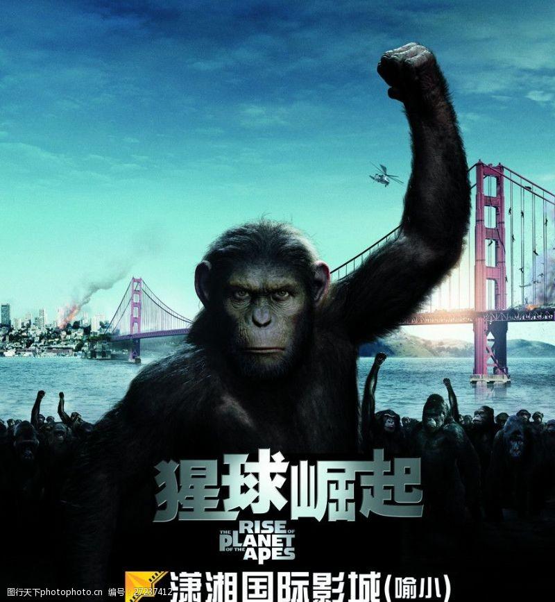 传广告猩球崛起小猩猩