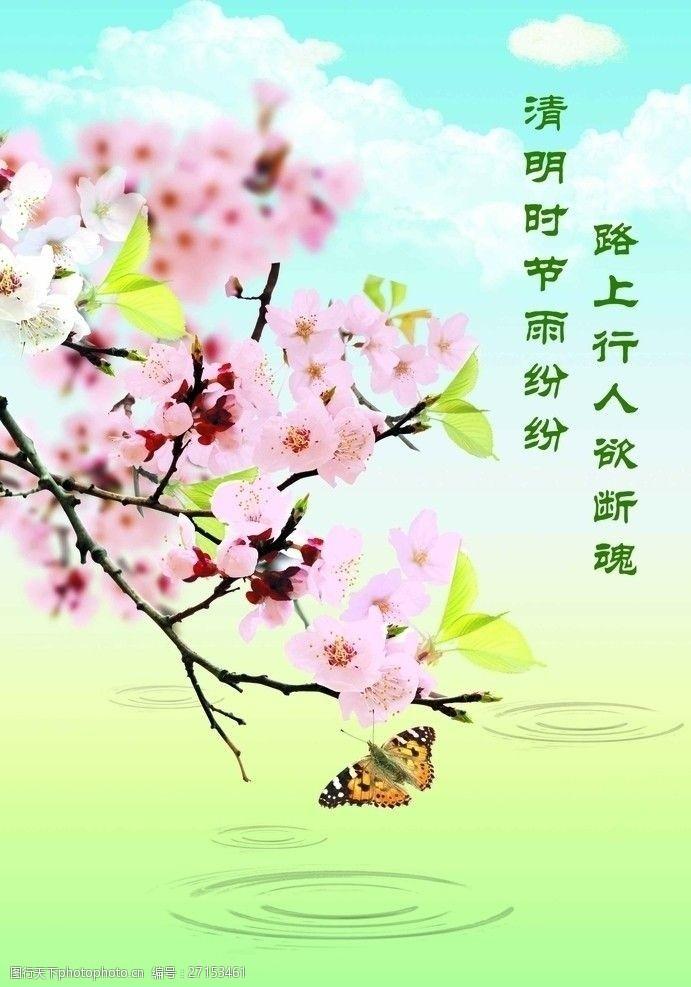 樱花广告清明踏青