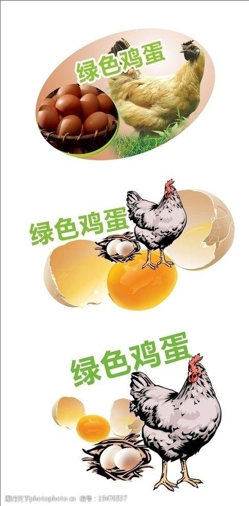 鸡蛋吊牌图片