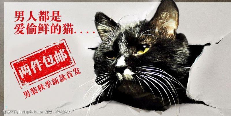 创意猫咪网页促销广告
